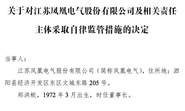 鳳凰電氣董事長被警示 未履行信息披露義務等